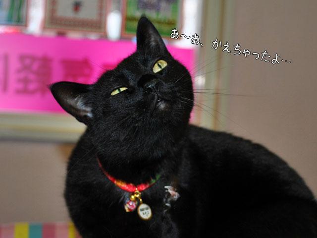 b0029777_21271040.jpg