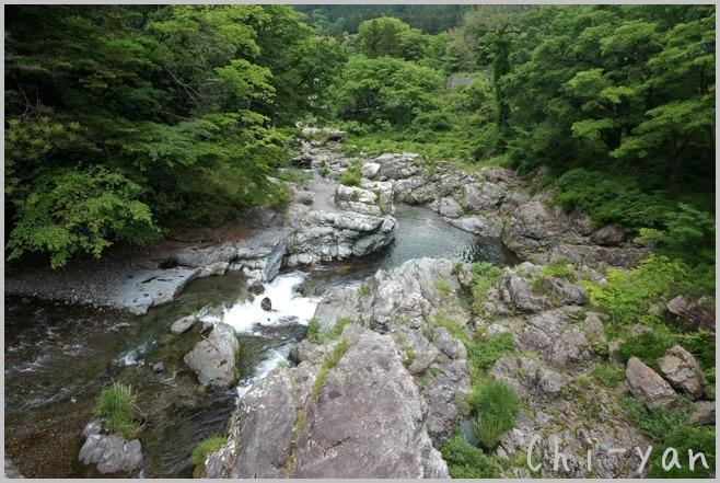 深緑の 「秋川渓谷」_e0219011_18181035.jpg