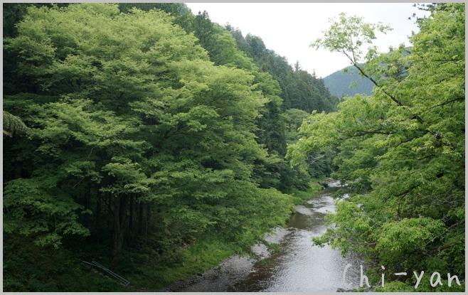 深緑の 「秋川渓谷」_e0219011_1818135.jpg