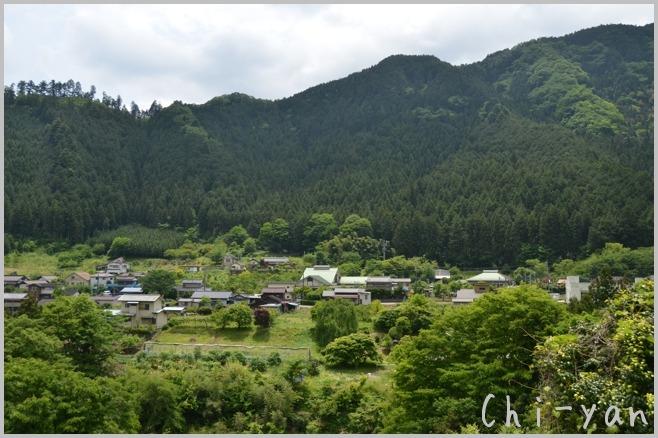 深緑の 「秋川渓谷」_e0219011_18205912.jpg