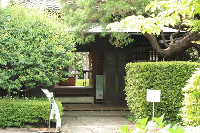松戸市戸定邸no庭園 2。_a0214329_972686.jpg