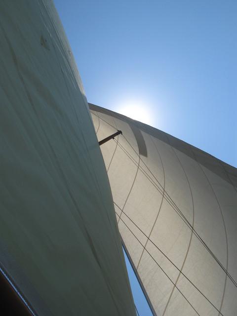 風と陽射し ( Vent et rayon de soleil ) …… 。_b0287748_403642.jpg