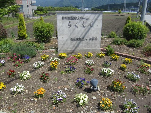 【花】_e0191174_20241272.jpg