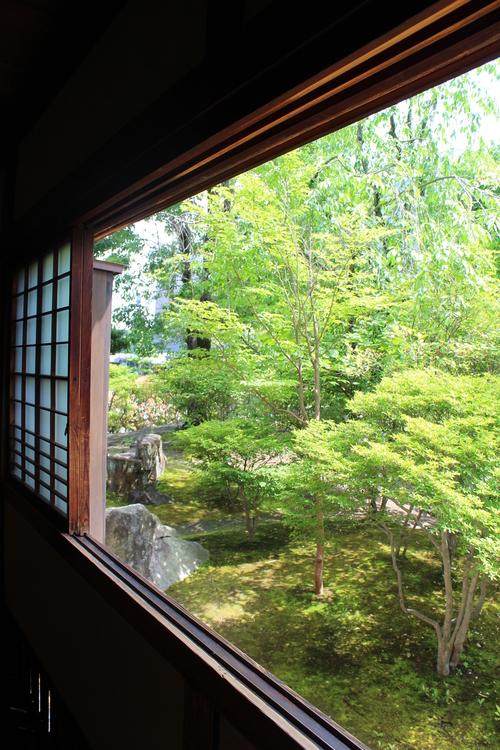 喜楽亭で味わうおいしい日本茶_b0220318_6204857.jpg