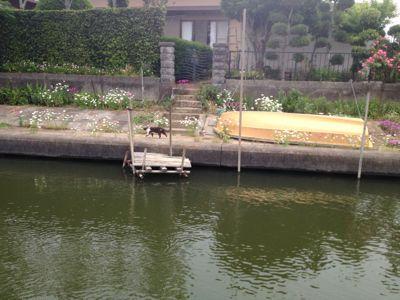 利根川水系DAY3☆_e0100021_2353091.jpg
