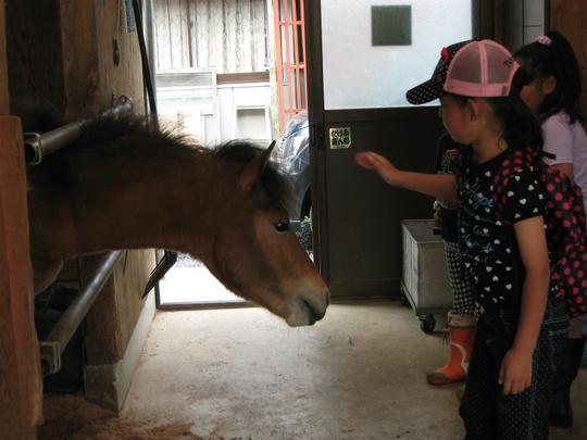 乗馬体験!!!_e0061225_11103645.jpg