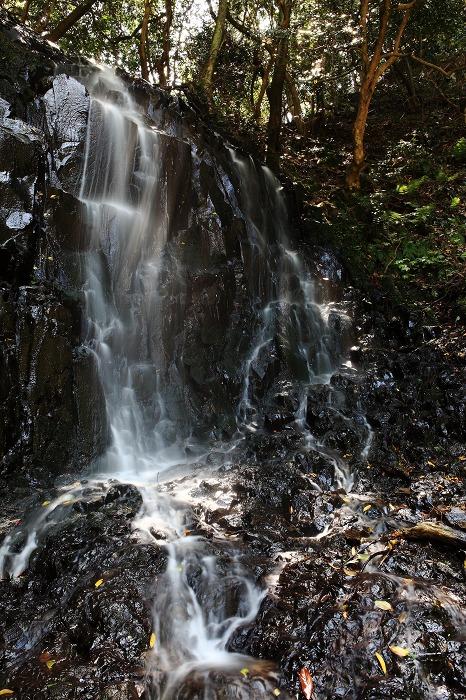 京丹後市 滝巡り_a0294534_13491557.jpg