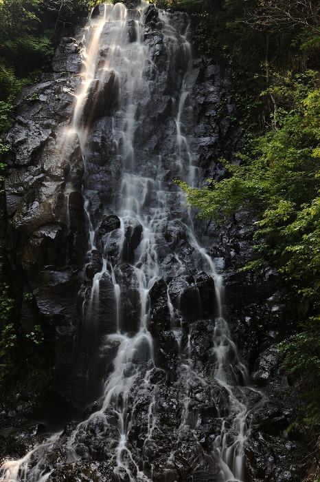 京丹後市 滝巡り_a0294534_13555031.jpg