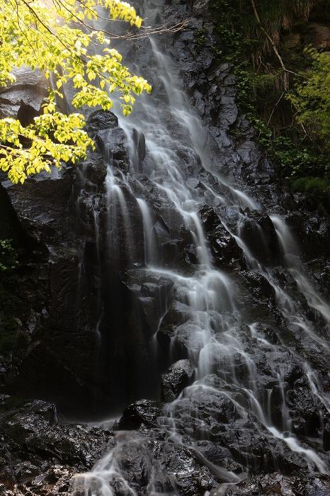 京丹後市 滝巡り_a0294534_13571755.jpg