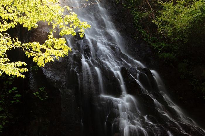 京丹後市 滝巡り_a0294534_13574399.jpg