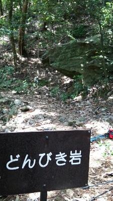 山登り_a0272042_243451.jpg