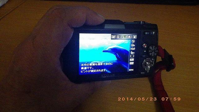 TG-2 浦安、親と子のスノーケリング_b0075059_0101972.jpg