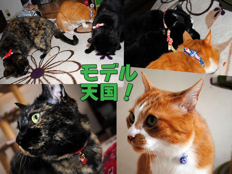 b0029777_1664690.jpg