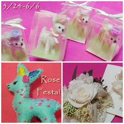 Rose Festa 2014☆_c0220186_12171088.jpg