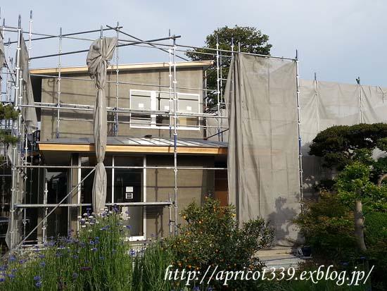 【家づくり】 上棟から4ヶ月 外部塗装と階段_c0293787_86538.png