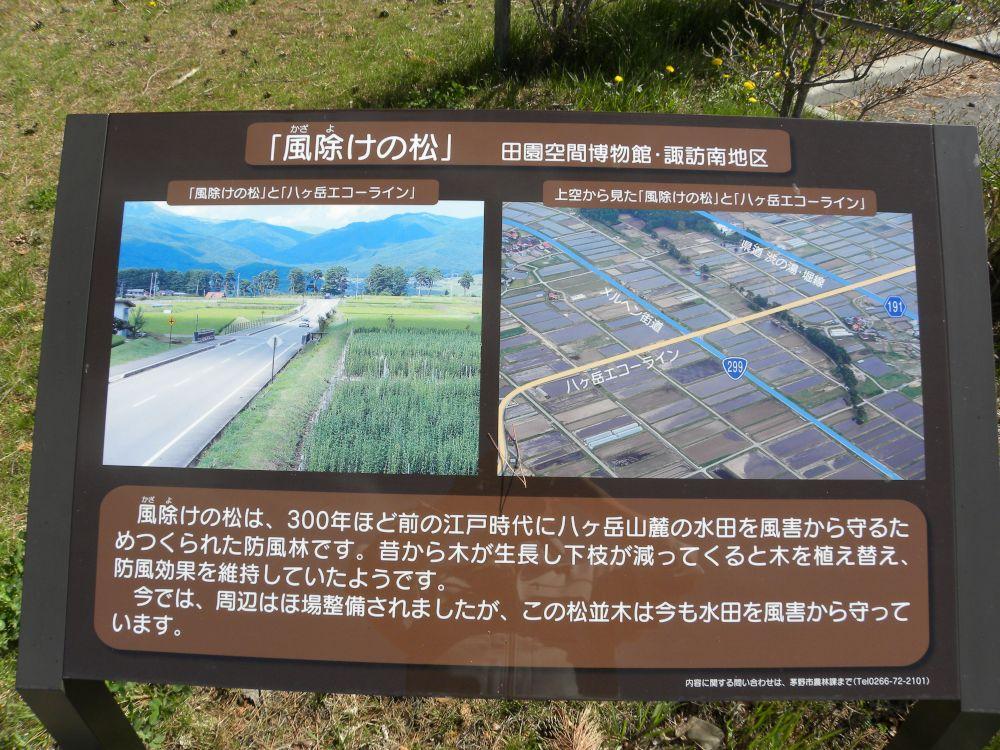 湖東・新井の風除け公園_b0329588_10592011.jpg