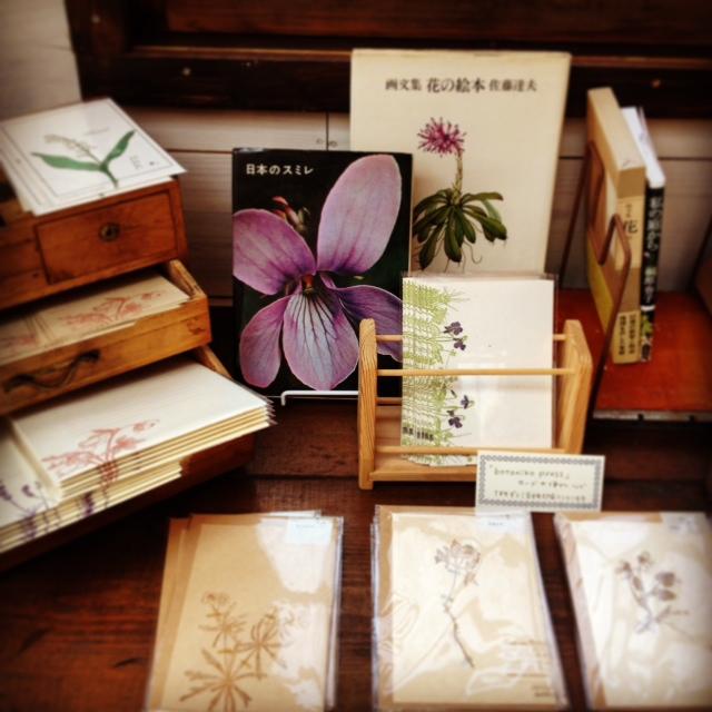 「花々と」日記(2):紙のモノと古本_d0028589_9291743.jpg
