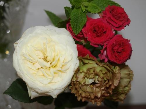 孫の結婚式に_e0094102_14193212.jpg
