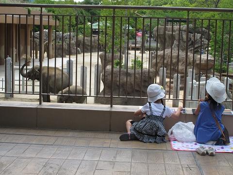 動物園_c0077531_23461694.jpg