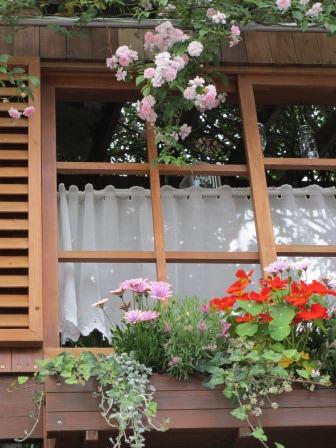 雨降り前の庭のお花たち_a0243064_20060012.jpg