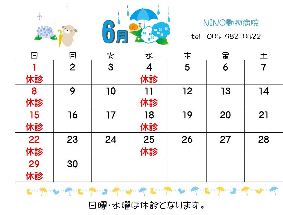 6月の休診日_e0288670_13251347.jpg