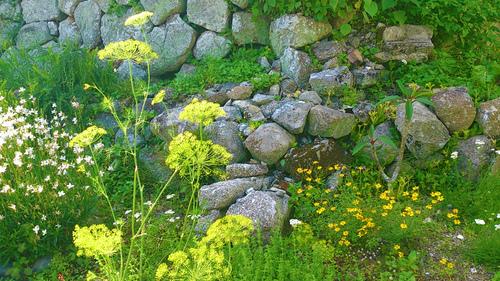 春のしずくギャラリー、愛しい花々。_b0240382_13255091.jpg