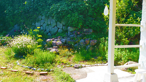 春のしずくギャラリー、愛しい花々。_b0240382_1361565.jpg