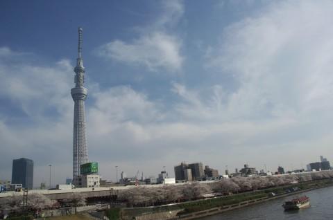 墨田区 ◇隅田公園◇_e0254682_15551300.jpg