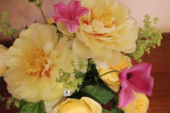 Yellow Beauty  ~芍薬~_c0128489_20345086.jpg