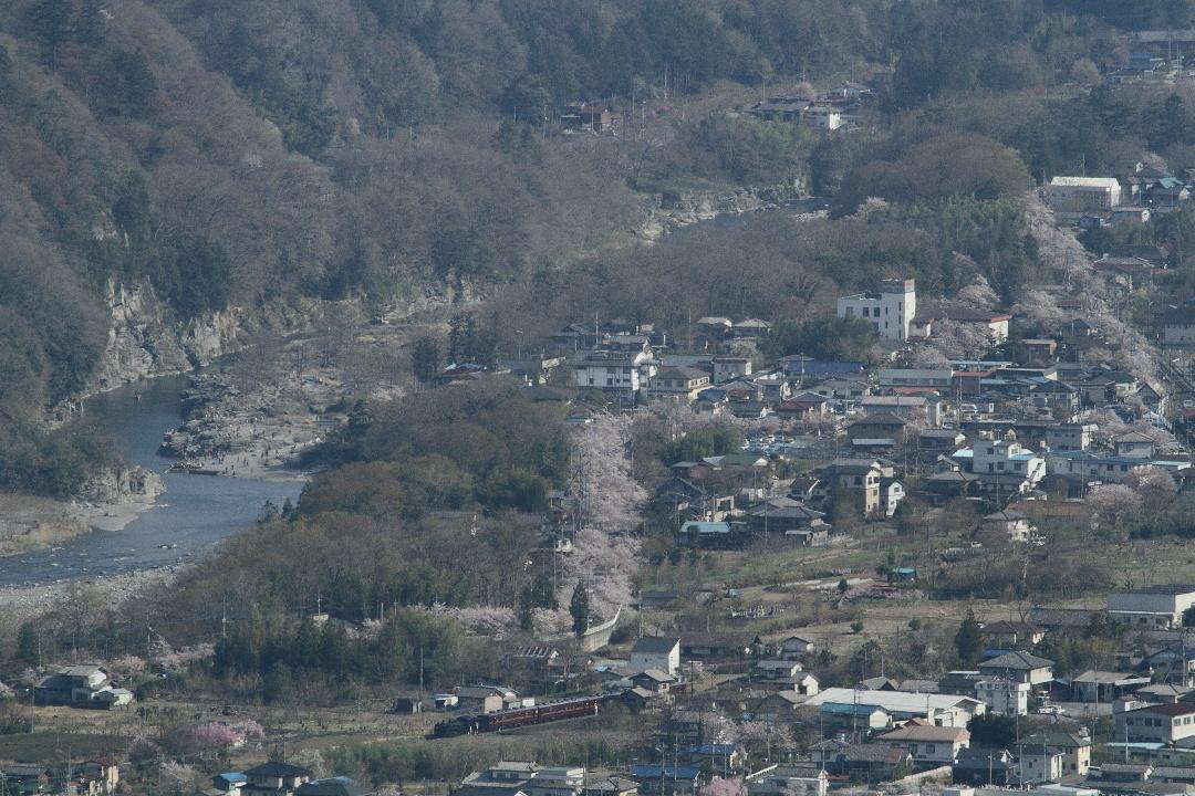 長瀞の渓谷に花が咲いていた頃 - 2014年桜・秩父 -  _b0190710_2250536.jpg
