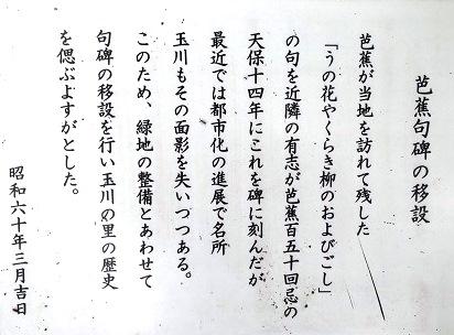 f0000521_1745129.jpg