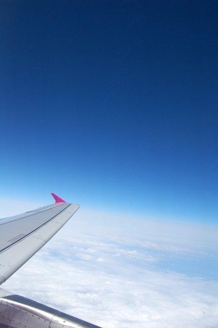 いざ札幌へ~~~_c0057390_058940.jpg