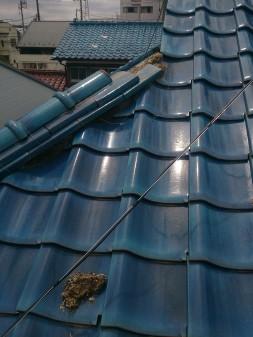 練馬区の西大泉で瓦屋根修理_c0223192_1842649.jpg