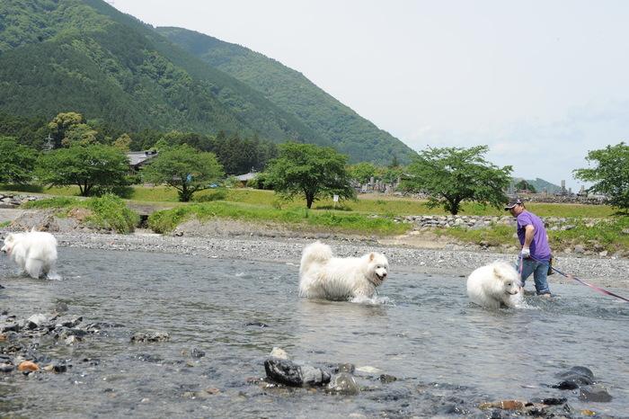 粕川キャンプ part1_a0049296_1944622.jpg