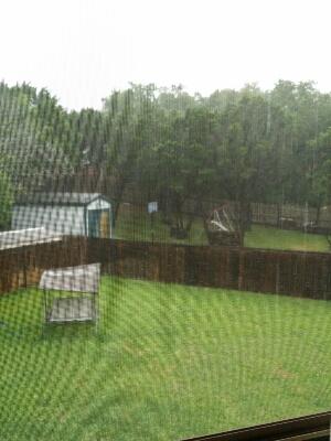 すごい雨です_d0156997_4181334.jpg