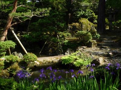 ~ 庭園の花々 ~_e0135219_1526023.jpg