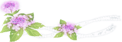 lafont-ラフォン-の素敵なサングラス part4  by 甲府店_f0076925_15594216.png
