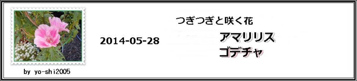 e0033229_2041153.jpg