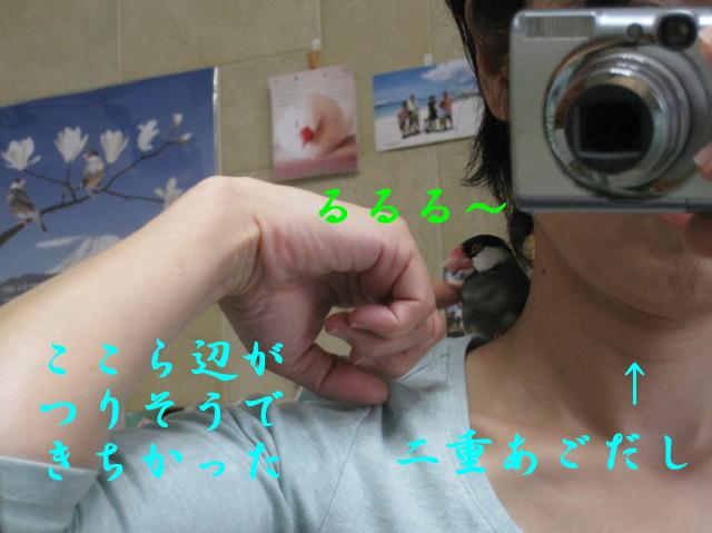 b0158061_222140.jpg