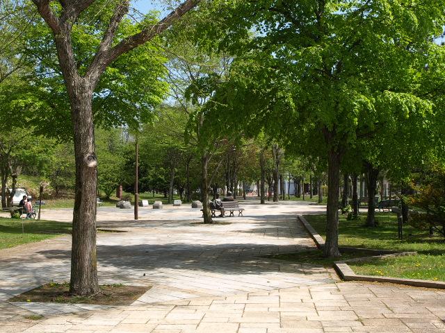 市民文化公園 5月_d0153062_9261868.jpg