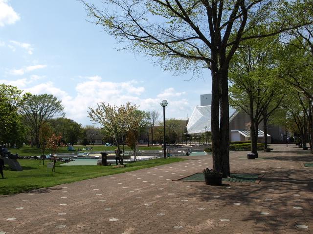 市民文化公園 5月_d0153062_9271584.jpg