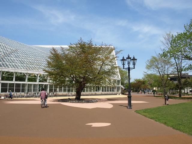 市民文化公園 5月_d0153062_9313961.jpg