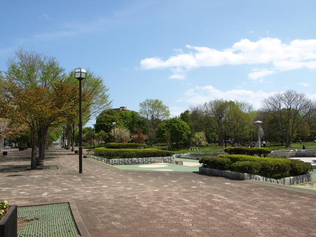 市民文化公園 5月_d0153062_9334979.jpg