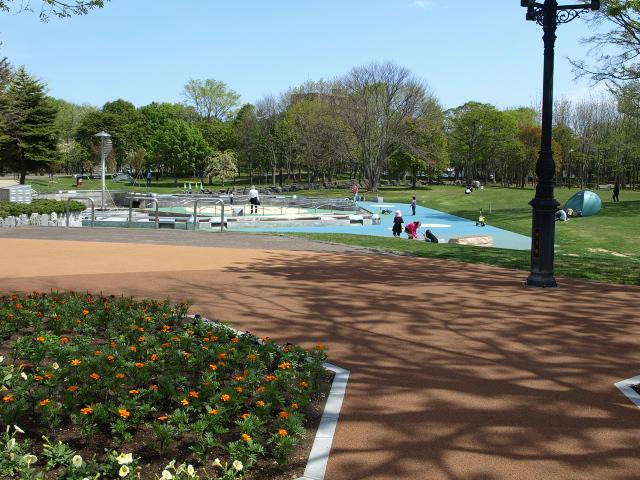 市民文化公園 5月_d0153062_933921.jpg
