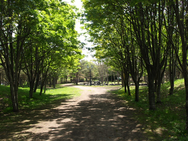 市民文化公園 5月_d0153062_93492.jpg