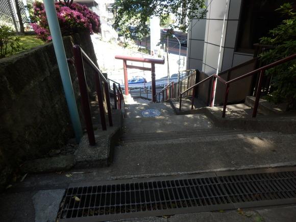 お江戸散策(氷川神社)、、、1_e0292172_2040673.jpg