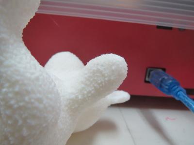自作3Dプリンタでクマをプリント_a0027275_1531508.jpg