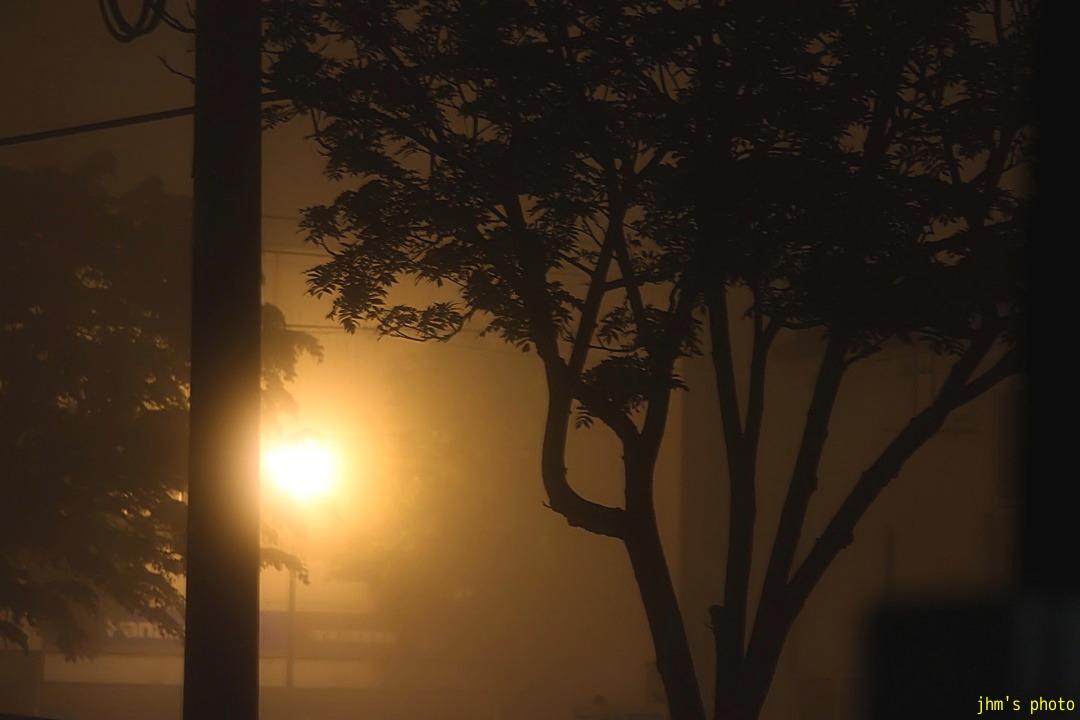 幻想的な夜霧の西部地区_a0158797_20425844.jpg