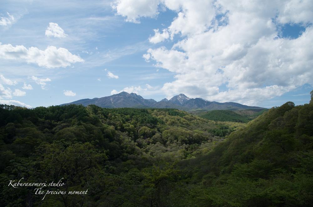 新緑の八ヶ岳_c0137403_1839494.jpg