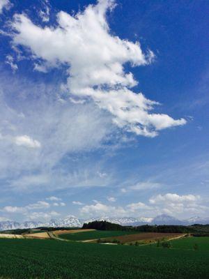 天気良好(^o^)/_f0096216_16482138.jpg